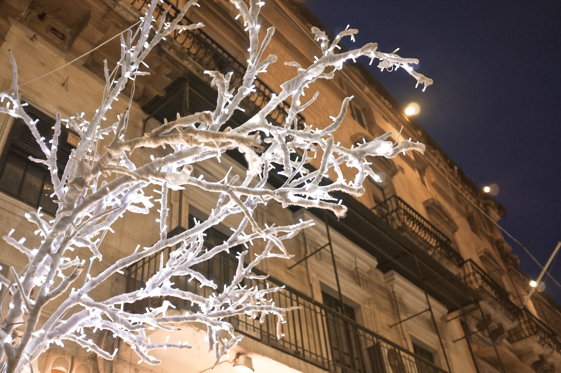 Christmas Lights in the City - Valletta